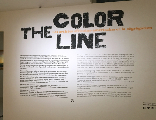 MUSÉE DU QUAI BRANLY – THE COLOR LINE